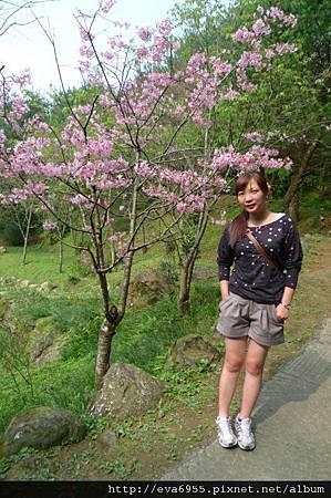 桃源仙谷 (126)