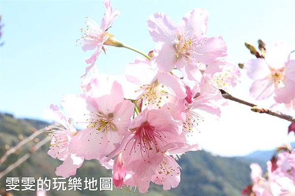 IMG_1388_副本.jpg