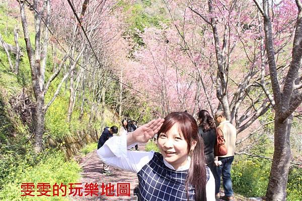 IMG_1407_副本.jpg