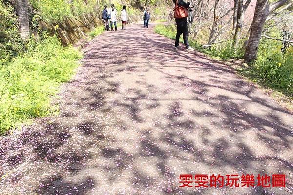 IMG_1411_副本.jpg