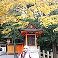 IMG_8114_副本.jpg