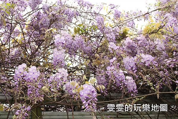 IMG_2168_副本.jpg