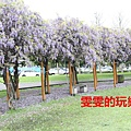IMG_2341_副本.jpg