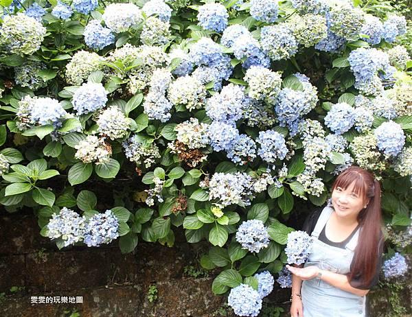 IMG_0145_副本.jpg