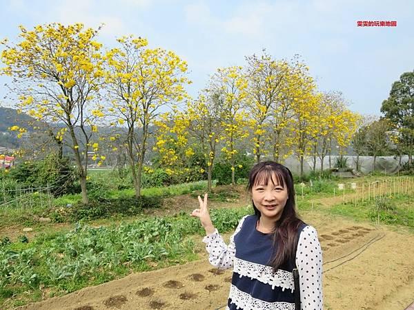 IMG_4593_副本.jpg