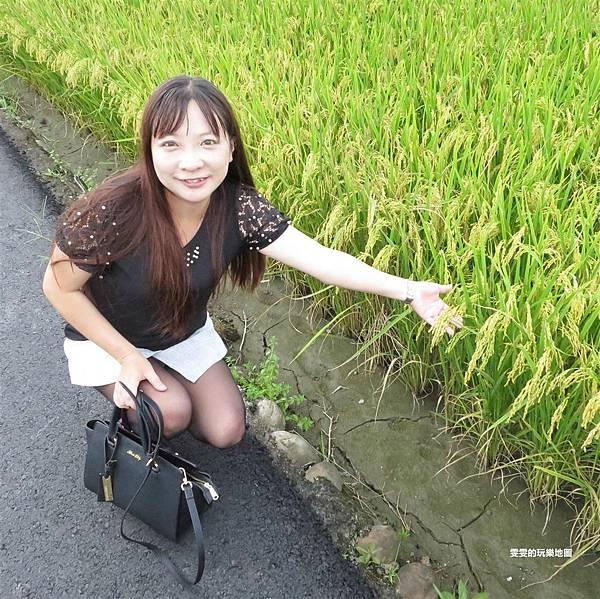 IMG_6904_副本.jpg
