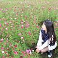 IMG_2203_副本.jpg