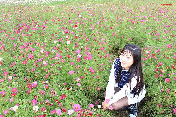 IMG_2204_副本.jpg