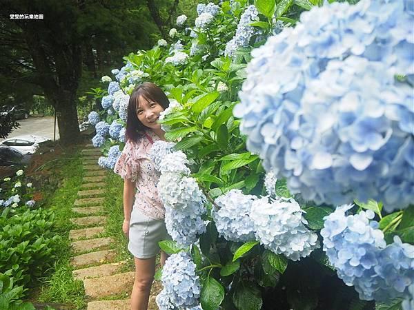 P6140252_副本.jpg