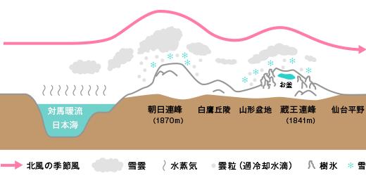 蔵王樹氷illust_juhyo2.png