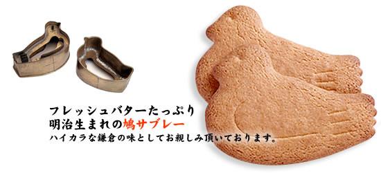 goods_pic.jpg
