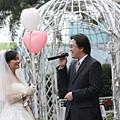 wedding 167.jpg