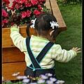 哇~有美美的花呢,安安真浪漫