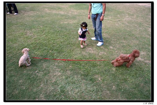 現場有狗蹓狗,很有趣,發現小米一點都不怕狗狗喔