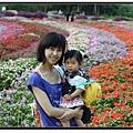 五顏六色的花海