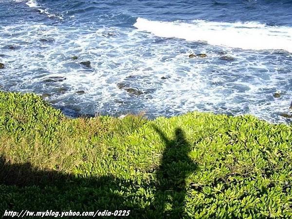 大海和我的影子.JPG
