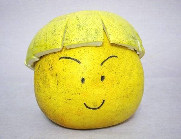 小白的西瓜皮頭.JPG