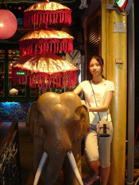 大象~~~