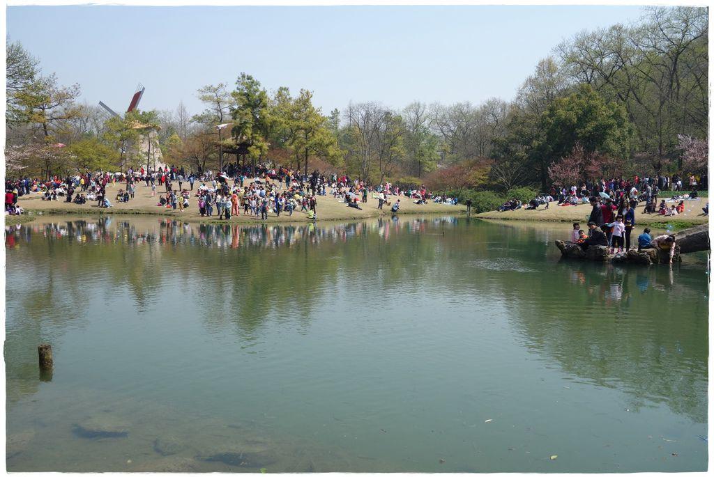 春.西湖-31