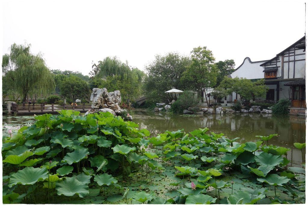 望津里酒店-10