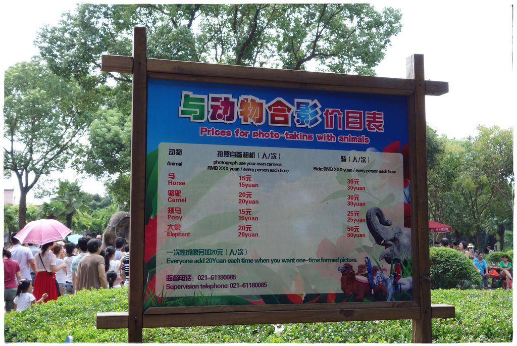 動物園-18