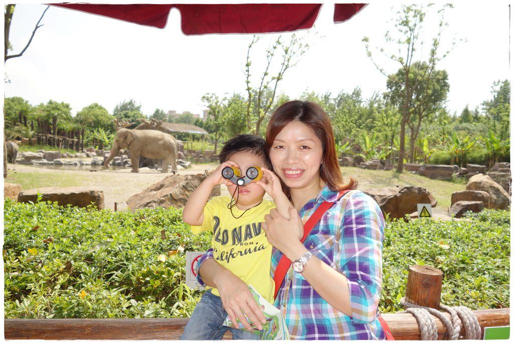 動物園-24