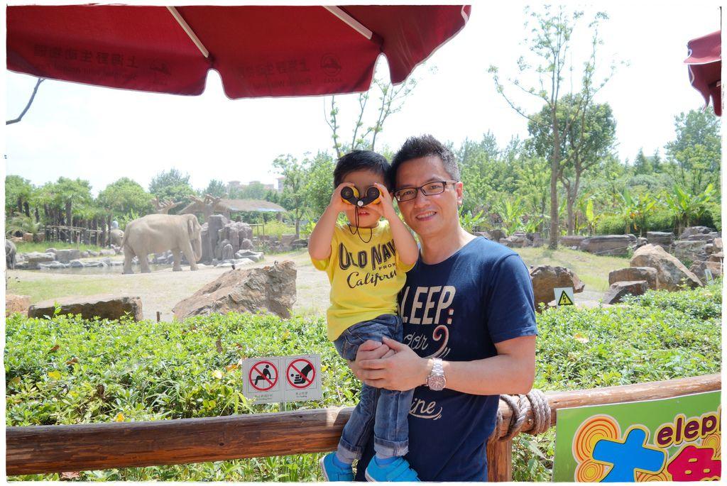 動物園-25