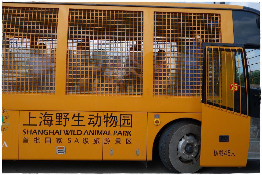 動物園-56