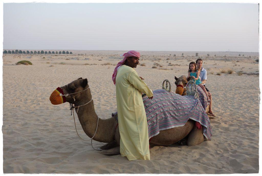 駱駝-7.JPG