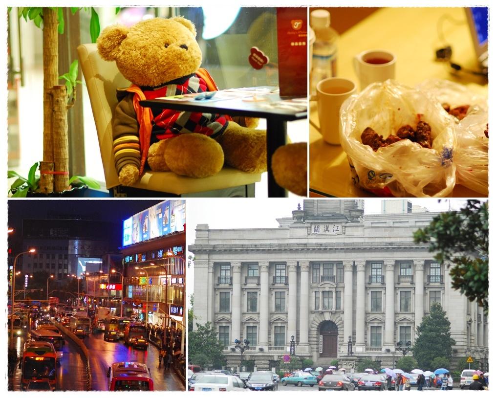 泰迪熊封面.jpg