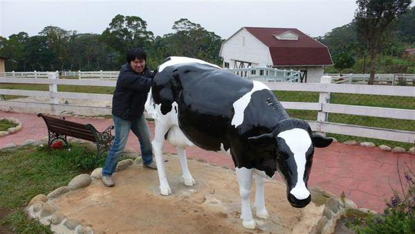 你你你 在對牛牛 做什麼事