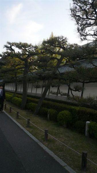 東本願寺外面的走道