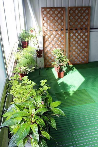 3F小花園