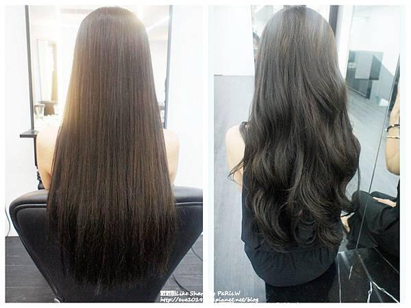 頭髮比對.jpg