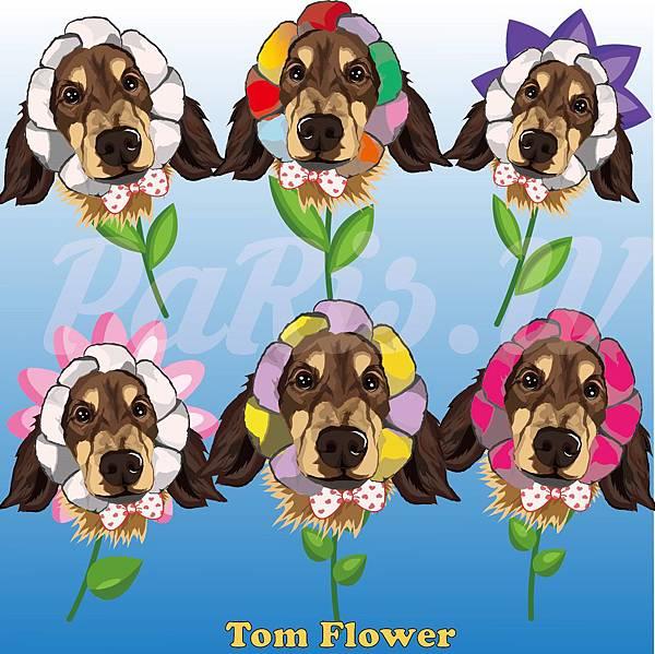 六朵造型花.jpg