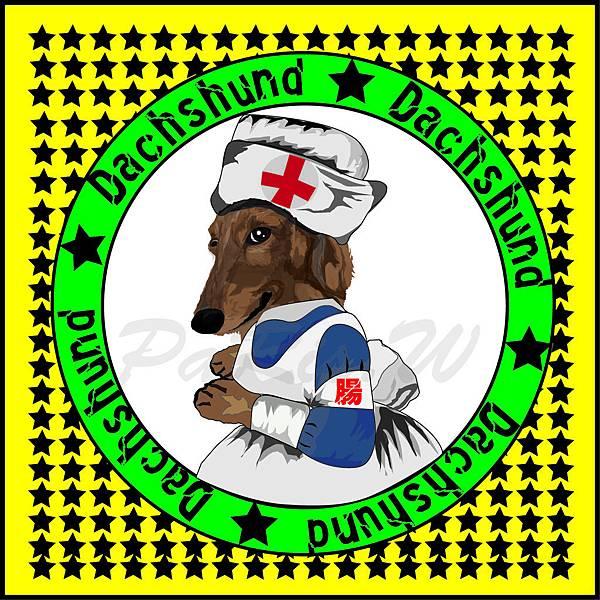 小護士腸.jpg