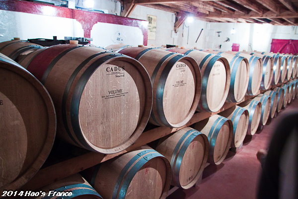 20140414聖艾米里翁品酒100.jpg