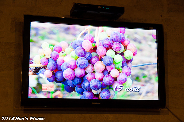 20140414聖艾米里翁品酒99.jpg