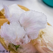 20150114彩虹貓冰屋97.jpg