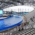 201504遠雄海洋公園海豚49.jpg