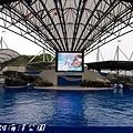 201504遠雄海洋公園海豚54.jpg