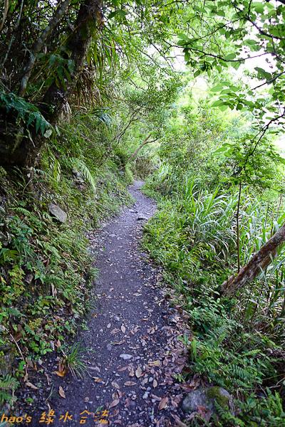 201504綠水合流步道017.jpg