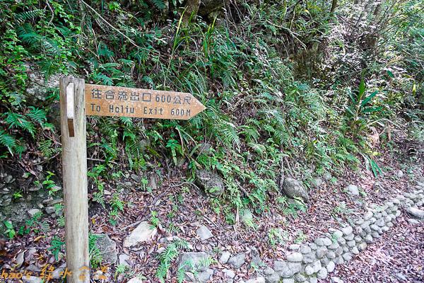 201504綠水合流步道066.jpg