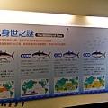 201602順億鮪魚專賣027.jpg