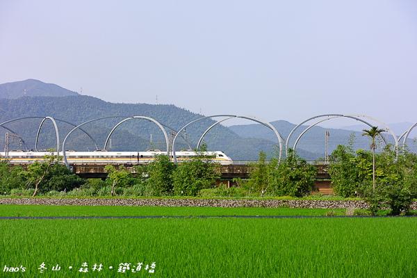 201604冬山‧森林‧鐵道橋008.jpg