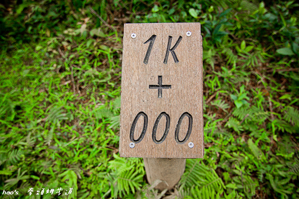 201602拳頭姆步道041.jpg