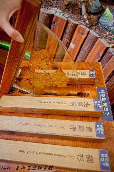 201603員山生態教育館036.jpg