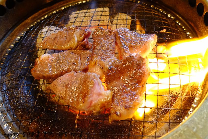 201605石垣島きたうち牧場044.jpg
