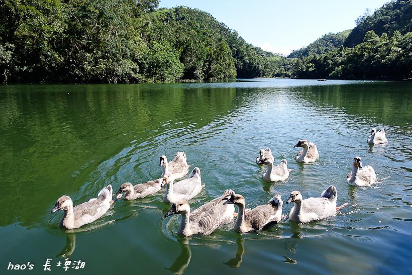 201606長埤湖081.jpg
