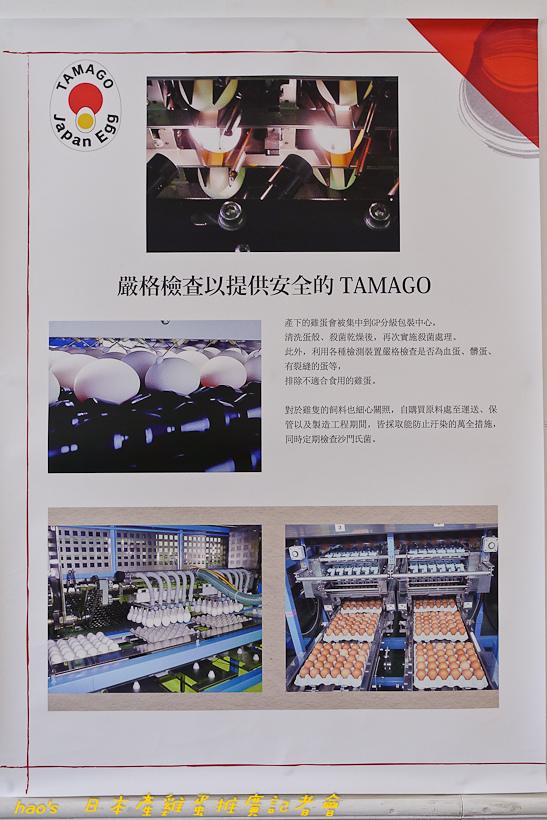 201609日本產雞蛋046.jpg